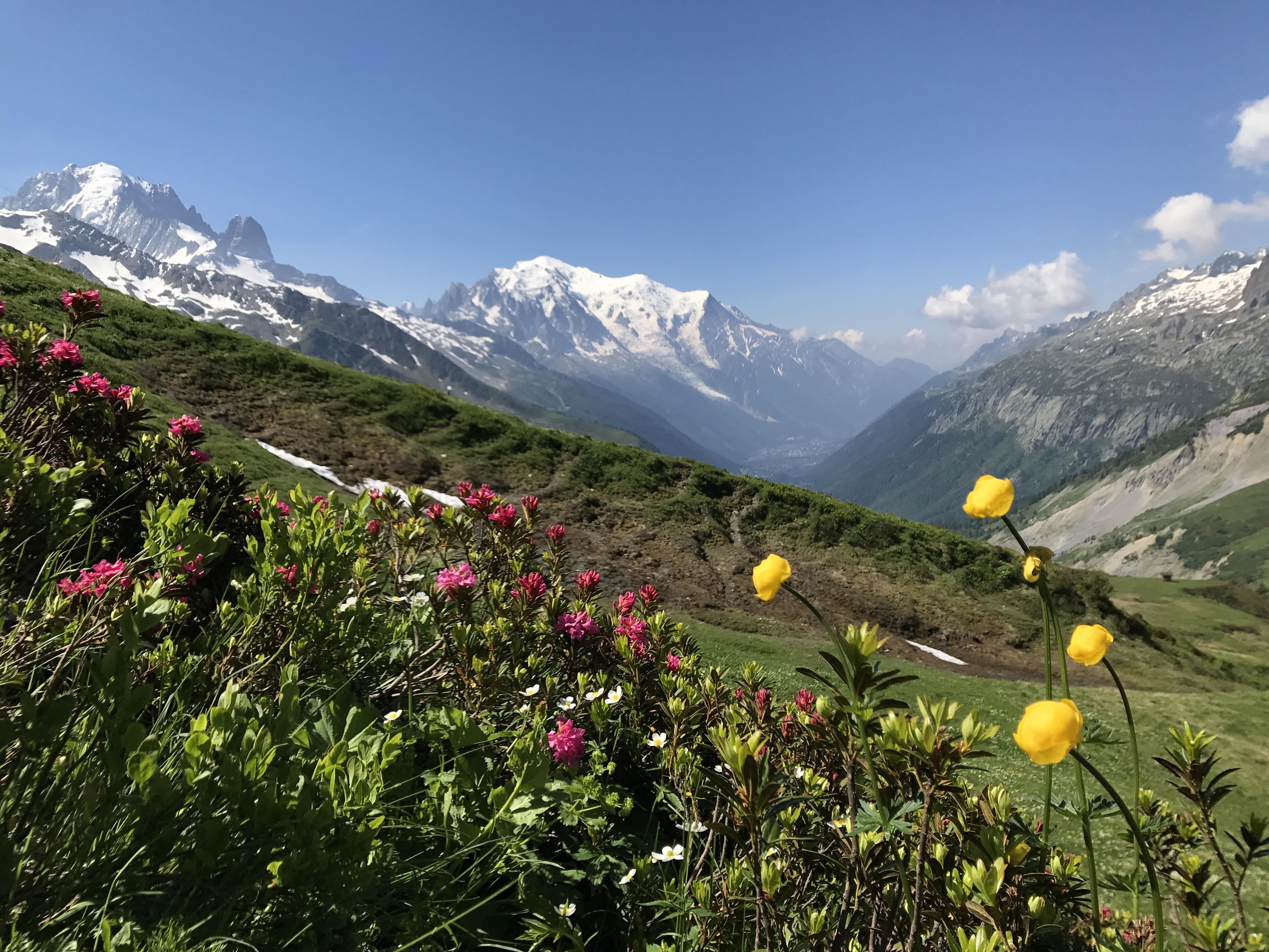 Nouvelles printanières de la Vallée de Chamonix _Office_de_Tourisme_Valle_de_Chamonix_-_2
